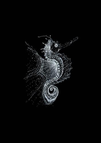 white on black drawings